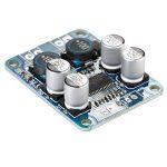 ARCELI TPA3118 PBTL Mono Amplificateur Numérique Conseil Module 1x60 W Puissance AMP DC 8-24 V de la marque ARCELI image 2 produit
