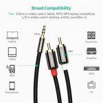 câble cinch mini jack TOP 6 image 1 produit