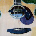 câble guitare acoustique TOP 9 image 2 produit