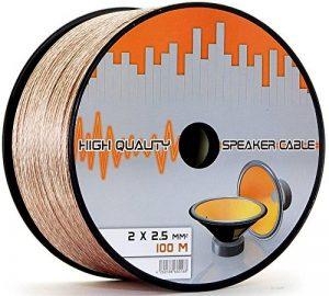 câble haut parleur 100m TOP 13 image 0 produit