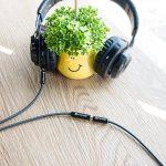 cordon audio TOP 7 image 1 produit