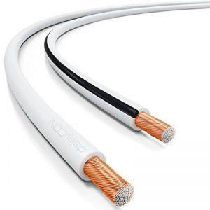 deleyCON 50m Cable pour Haut-Parleur 2X 2,5mm² - CCA Aluminium Revêtu de Cuivre Brins 2x50x0,25mm Marque de Polarité - Blanc de la marque deleyCON image 0 produit