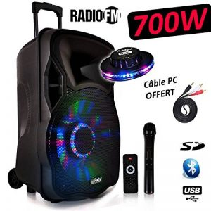 """Enceinte Mobile Batterie LED 600W 12"""" à LEDs RVB - USB/BT/SD Effet OVNI Câble PC de la marque Party Sound image 0 produit"""