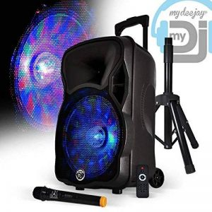 "Enceinte sono karaoke batterie 12"" 600W effet Friztal + Micro sans-fil + Pied - MyDJ MAGIK12 de la marque MyDJ image 0 produit"