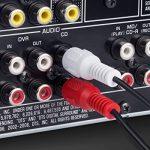 Fosmon RCA câble (6 FT) 2RCA Mâle à 2RCA MâleStéréo Audio Câble, Composite Audio [Droite/À Gauche] 2 RCA Plug M/M connecteur Rouge et Blanc pour A/V Reciever, amplificateur, projecteur, Home Cinéma de la marque Fosmon Technology image 1 produit
