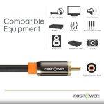 FosPower (0,9m) RCA Câble Audio Numérique Coaxial (24K Or Plaqué Connecteurs) S/PDIF RCA mâle vers / à RCA mâle pour Accueil Le théâtre, HDTV, Subwoofer, Hi-Fi systèmes de la marque FosPower image 2 produit