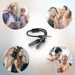KabelDirekt Câble Adapteur 3.5mm Stéréo Jack (1x prise mâle > 2x prises femelles) PRO Series de la marque KabelDirekt image 1 produit