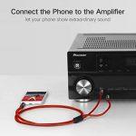 LinkinPerk 5M Câble Audio Jack 3.5mm vers Double 6.35mm, 2 x 6.35 Mâle vers 3.5 Mâle Mono Câble Y Splitter Pour Téléphone ,Tablette,Cinéma Maison,Table de Mixage 5M de la marque LinkinPerk image 3 produit