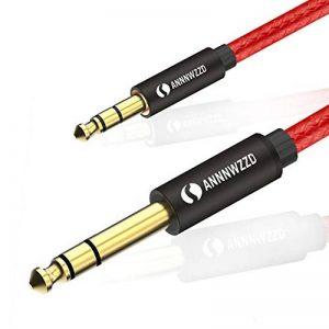 LinkinPerk Câble Audio Jack 3.5mm vers 6.35mm, pour Tablette, Lecteurs de DVD, Haut-parleurs, Table de Mixage, Cinéma Maison etc (5M) de la marque LinkinPerk image 0 produit