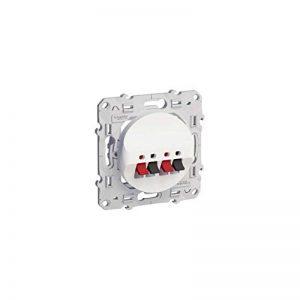 prise haut parleur double - blanc - fixation par vis - schneider odace de la marque Schneider electric image 0 produit