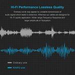 rallonge câble haut parleur TOP 9 image 3 produit