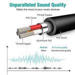 ReaLink Câble Audio Adaptateur 3.5mm Jack Stéréo Audio Micro Mâle vers Femelle en Aluminium pour Ordinateur de Bureau Ordinateur Portable Ecouteur Casque (1 Pack) de la marque ReaLink image 4 produit