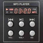 Skytec 172976 Stm-3020 Mélangeur à 4canaux avec USB/MP3 Noir de la marque Skytec image 3 produit