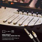 UGREEN Câble Audio Jack 3.5mm vers 6.35mm Stéréo Jack Nylon Tressé 3.5mm Mâle vers 6.35mm Mâle pour iPhone iPod Samsung S9+ Amplificateur Chaîne Hifi Lecteurs de DVD Haut-Parleurs Table de Mixage etc. (1 M) de la marque UGREEN image 2 produit