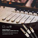 UGREEN Câble Audio Jack 3.5mm vers Double 6.35mm Mâle à Mâle Mono Câble Instrument en Tressé Nylon Pour Téléphone Tablette Amplificateur Haut Parleur Table de Mixage Lecteurs de DVD (1 M) de la marque UGREEN image 2 produit